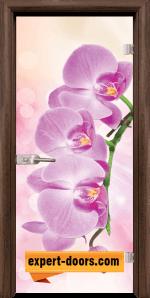 Print G 13 3 Pink T